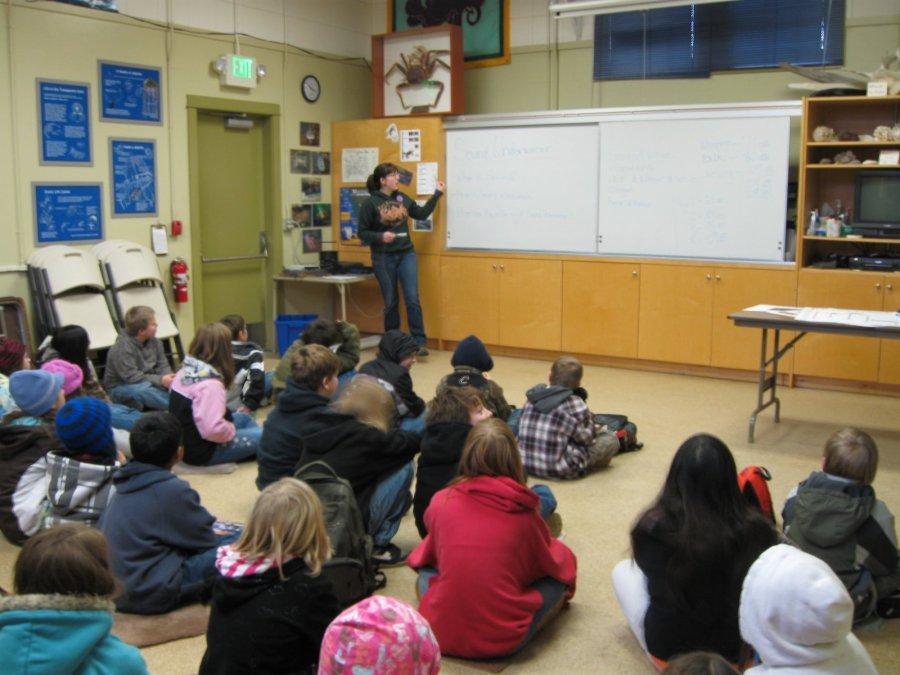 FSC-Liza Teaching